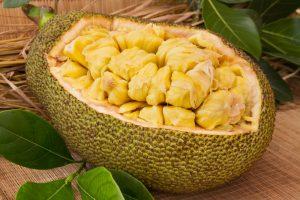 vegan jackfruit tacos_fruit