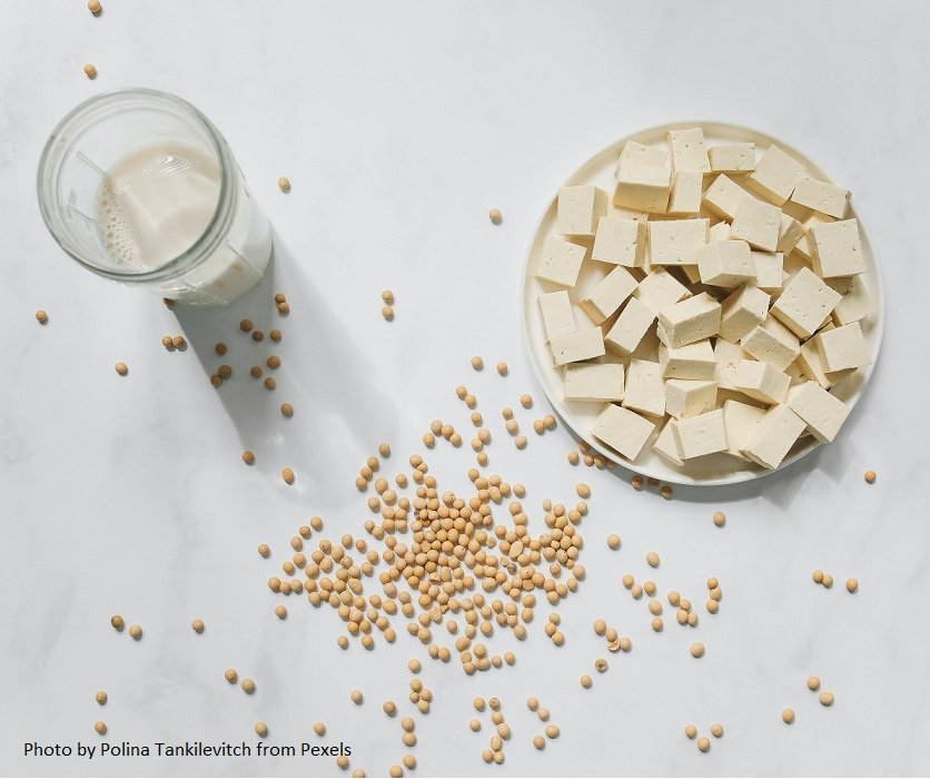 low cholesterol diet: tofu and soy